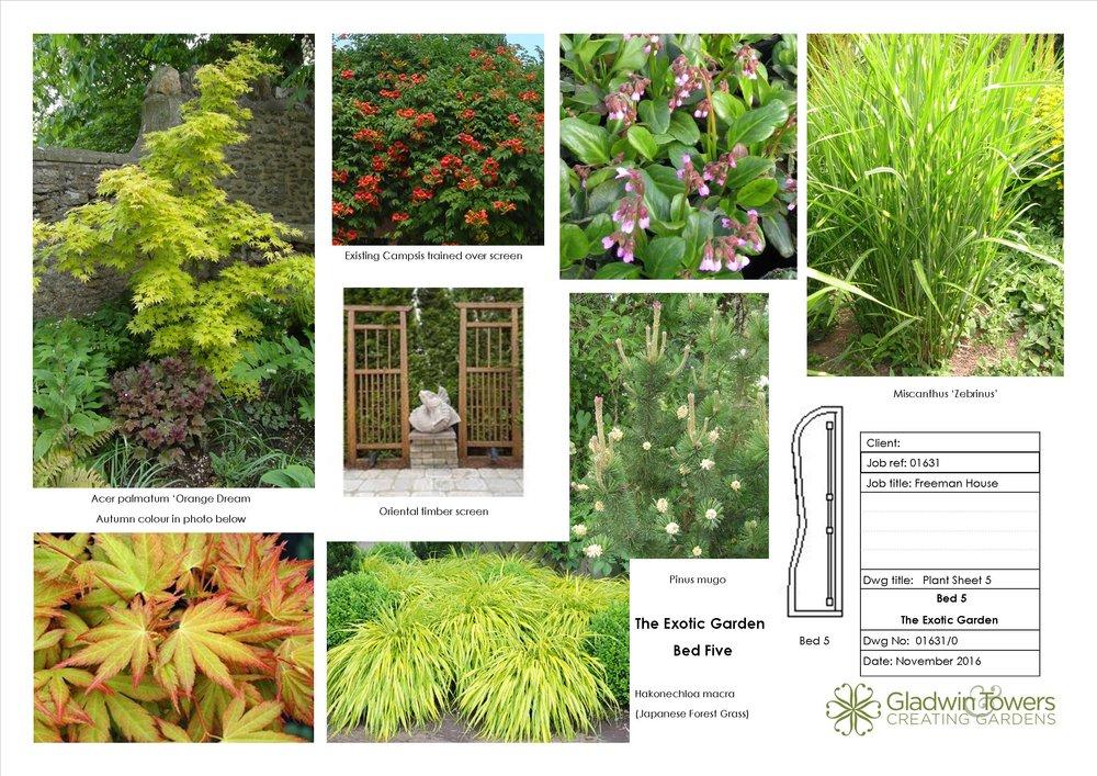 freeman Plant sheet 5.jpg