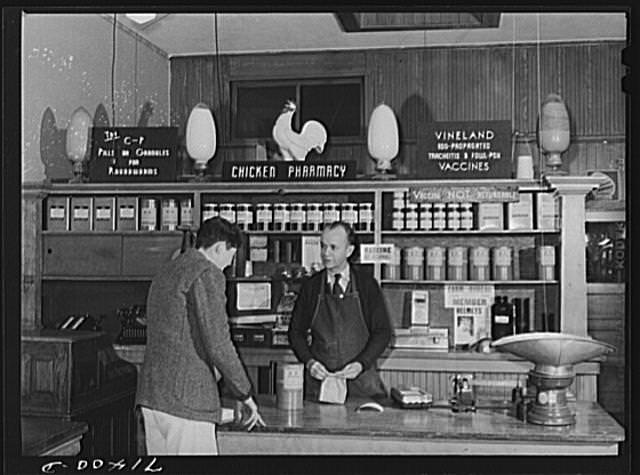 Lee, R., photographer. (1942) Petaluma, Sonoma County, California. In the chicken pharmacy. Jan [Image] Retrieved from the Library of Congress.