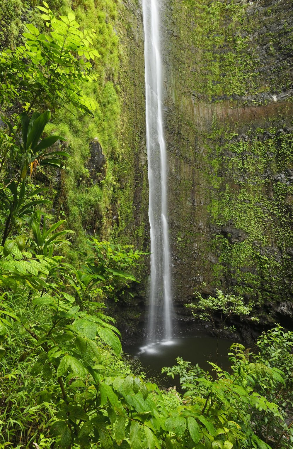 waterfall-hike-private-maui-tour-hana.jpg
