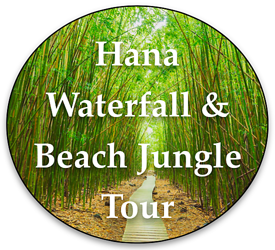 Hana Waterfall and Beach Jungle Tour By Local Maui Tours