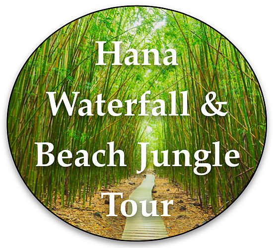 hana-waterfall-beach-private-maui-tour