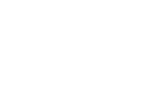 pueo-creation-maui-web-design-company-logo.png