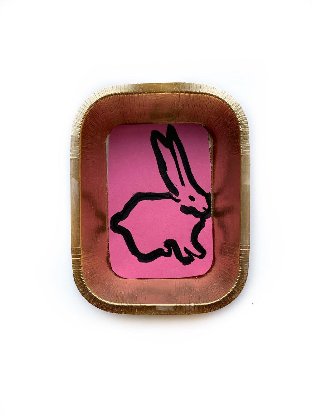 Framed Bunny Portraits