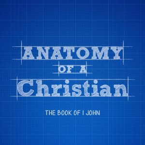 Anatomy of a Christian