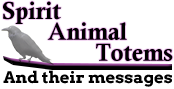 spirit-animal.com