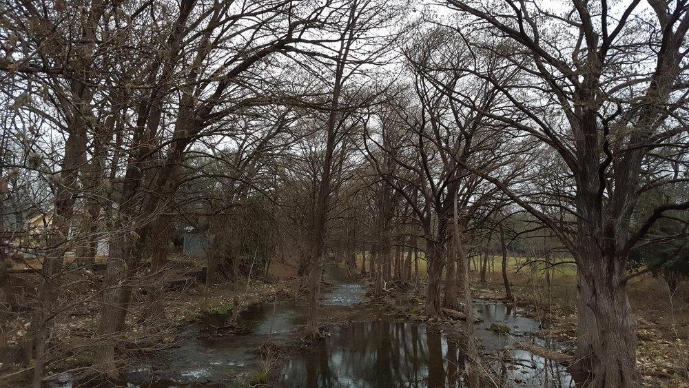 Downstream, looking upstream