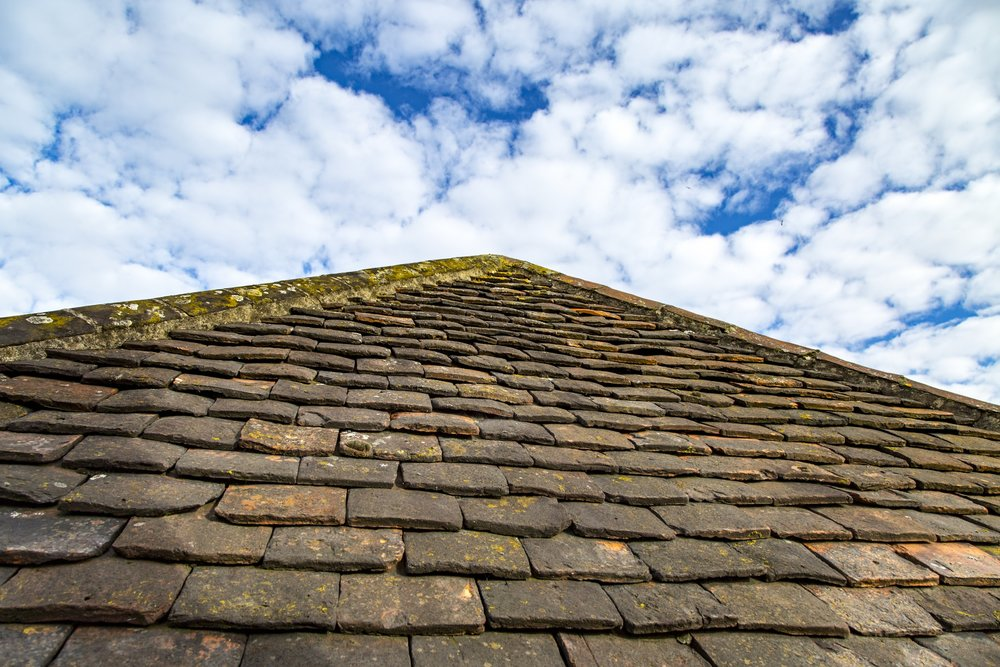 roof-1478191629SrU.jpg