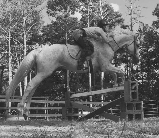 Jessica Horse.JPG