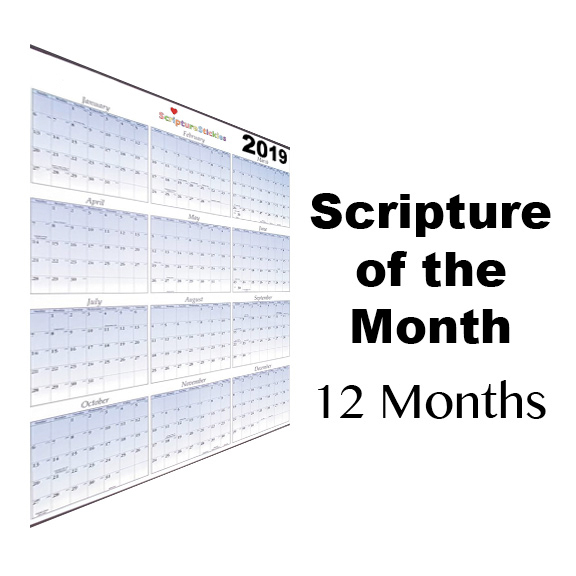 Scripture of the month clubs: 12 or 6 months