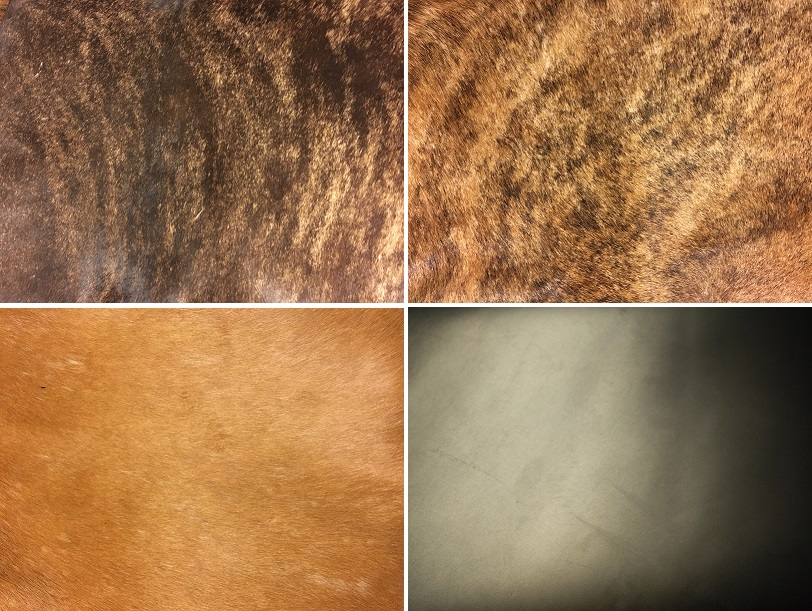 "DARK & MEDIUM BRINDLE, LIGHT BROWN/ORANGE HAIR ON HIDE & ""STONE"" FINISH ON BLACK COWHIDE"