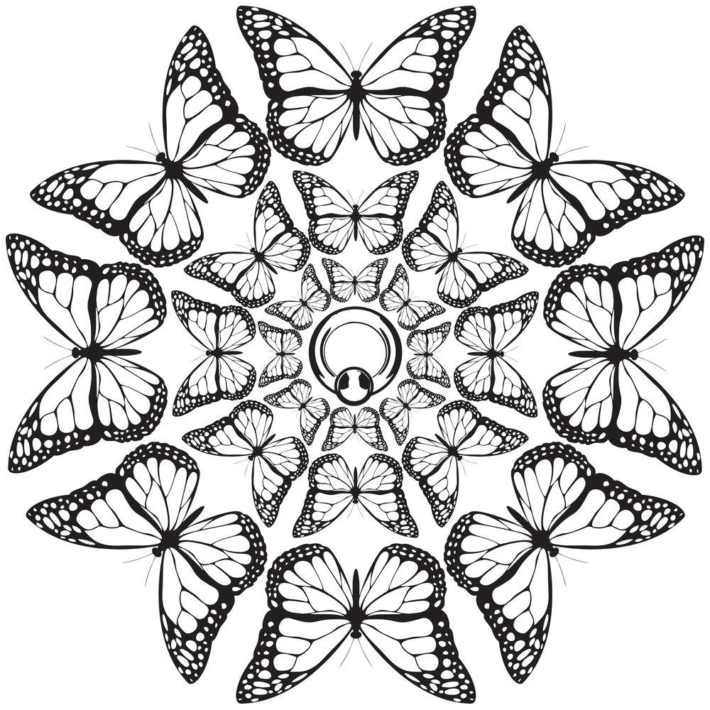 monarch body piercing_butterfly vortex-print.jpg
