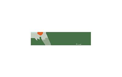 logo waywiser 2.png