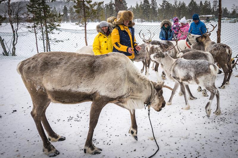 Sami Village Lovozero, Kola Peninsula