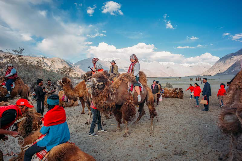 Camel Ride at Hunder Valley