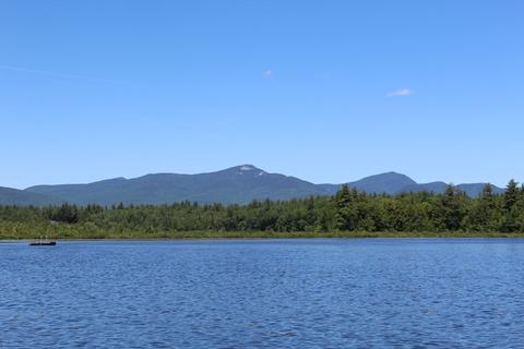 bearcamp pond.jpeg