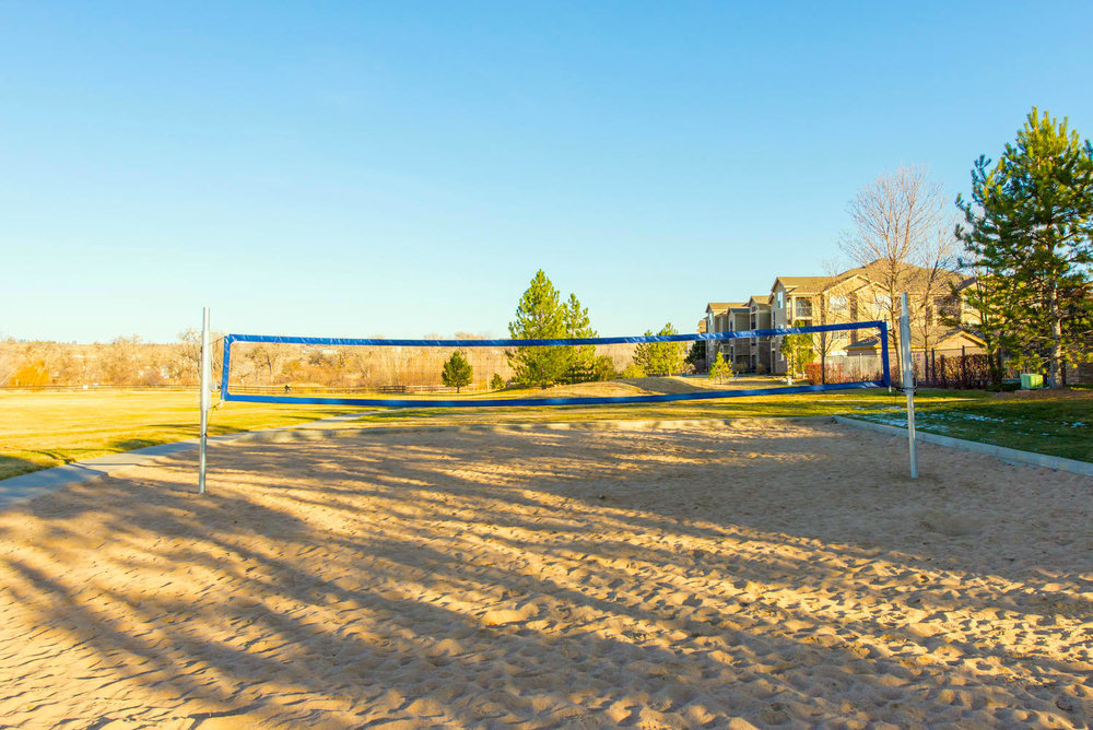9180+Rolling+Way-large-023-11-Community+Volleyball+Courts-1498x1000-72dpi.jpg