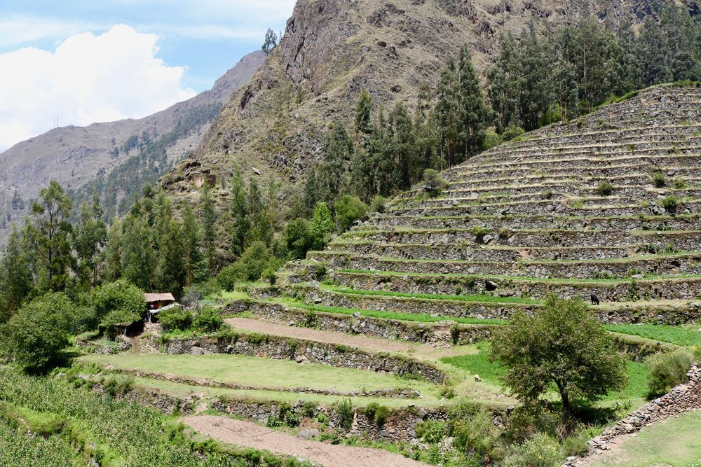 pumamarca day hike - incan terraces 2