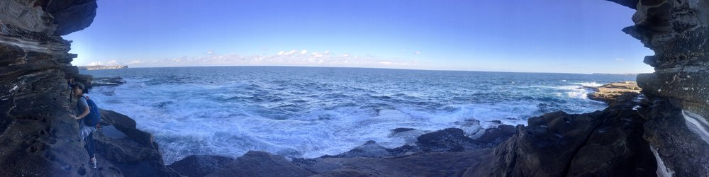 The good ol' Coogee to Bondi walk, but with some different twists and turns from the main path. Felt awesome to explore nature again, I hadn't been to the ocean in a while.