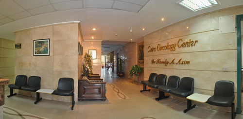 Cairo Cure Waiting Area 3