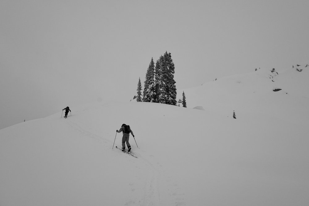 skiers taking another lap in perfect powder. Bruce Waddington hut, BC. Canada