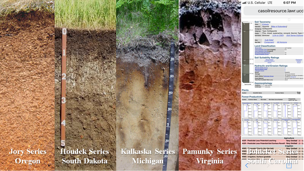 State Soils.png