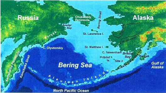 Figure 1 - Bering Sea Ecosystem