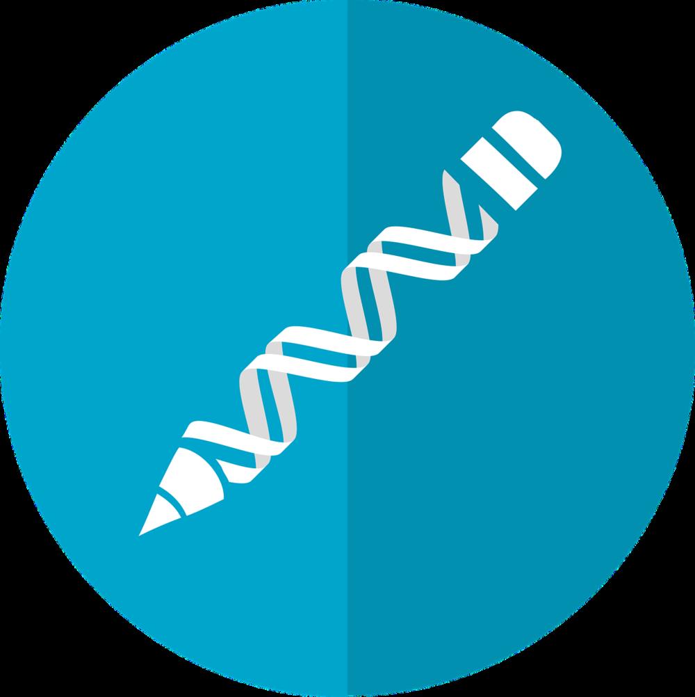 CRISPR dna.png