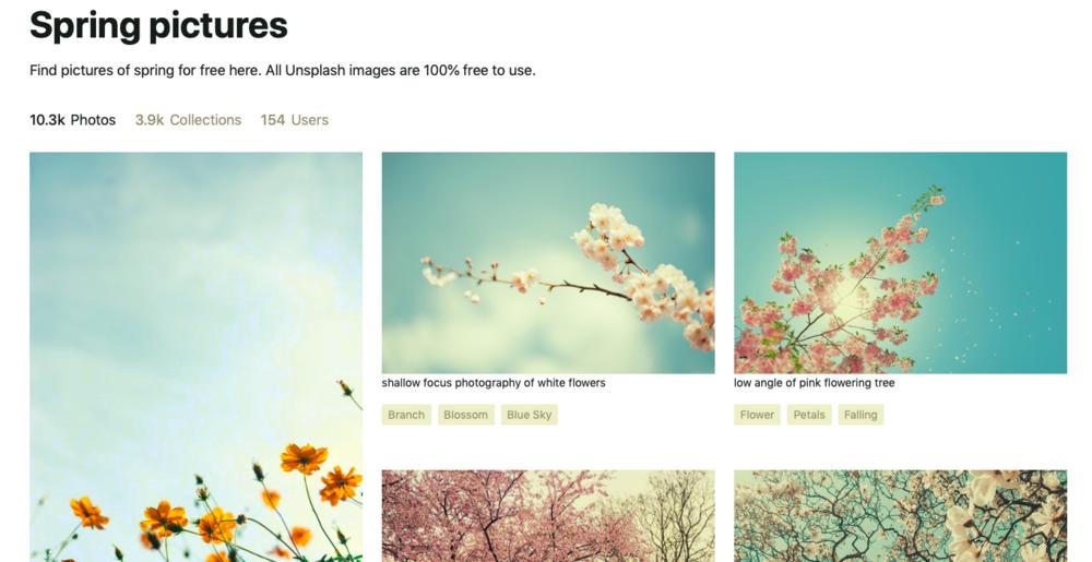 Ook in een beeldbank als Unsplash, kan je dus perfect op zoek naar de lente! :)