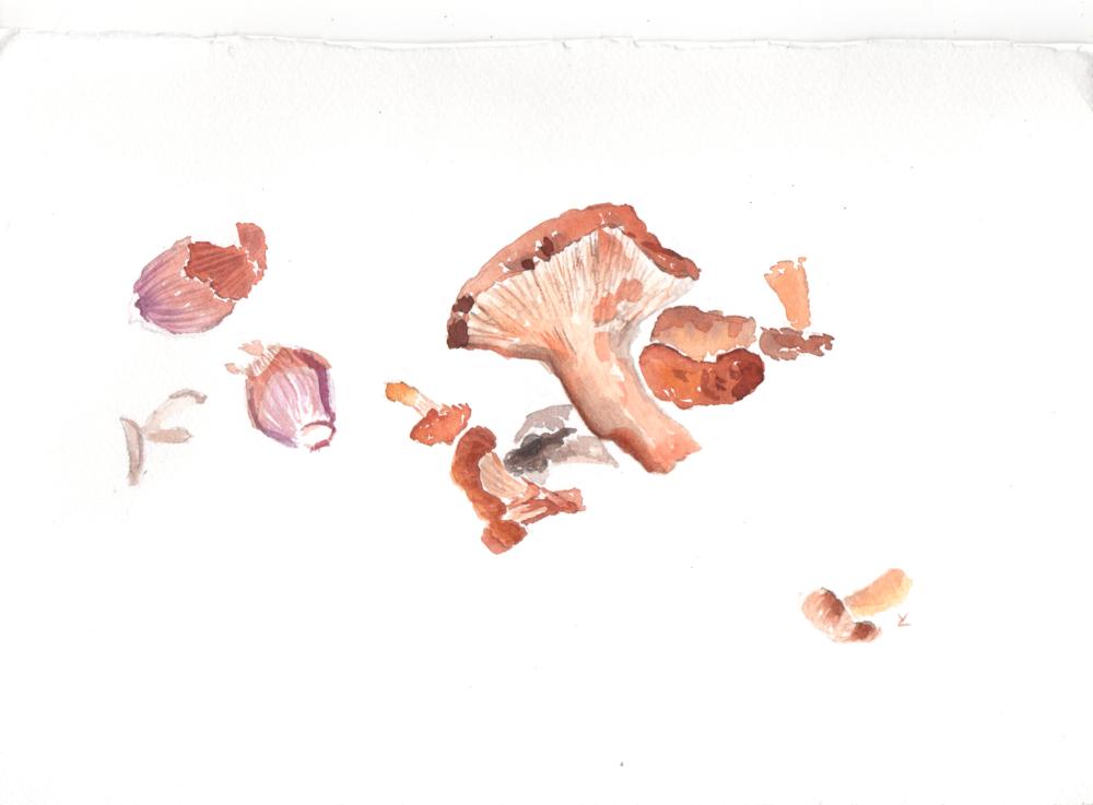 mushroomshallots.png