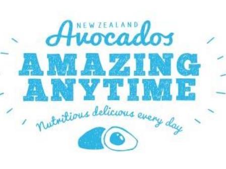 White background NZ Avocado