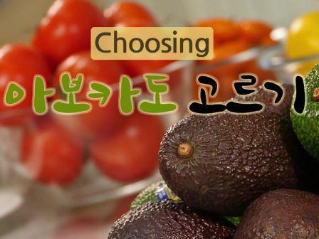 Avocado selection video
