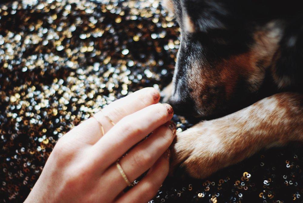 a hundo percent basic dog b approved manicure