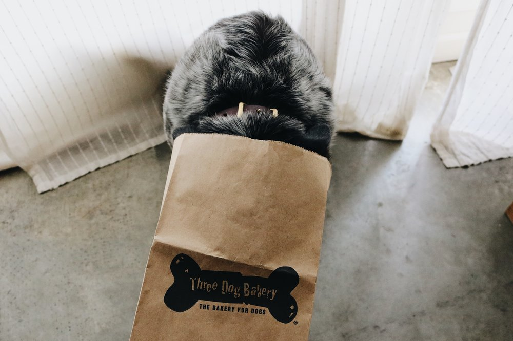 Three Dog Bakery - A Bakery for Dogs