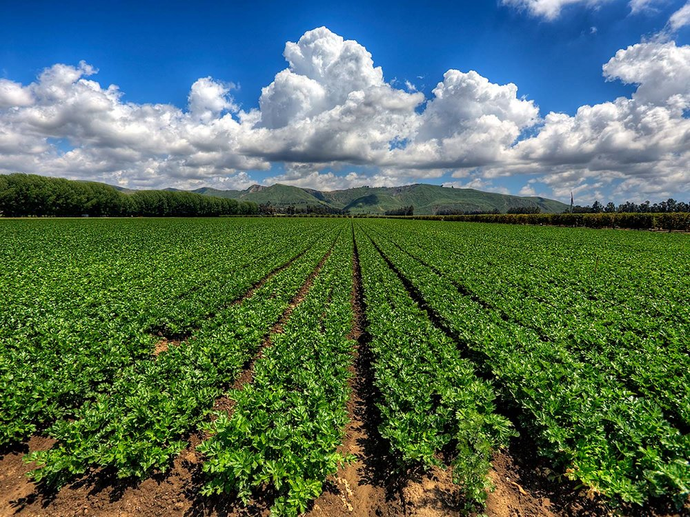 """Fields and Clouds Over South Mountain,"" a photograph by John Nichols at John Nichols Gallery (subject to availability)"