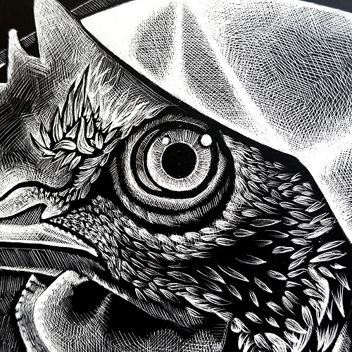 all things fowl detail eye 2 72 500