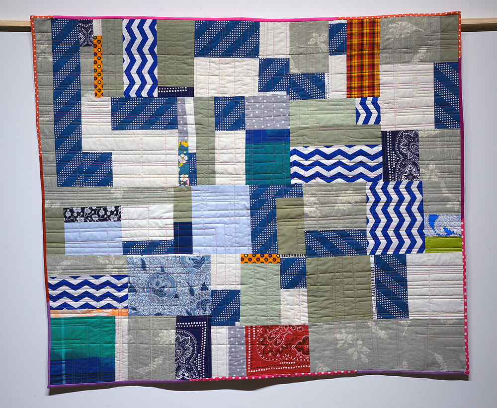 Quilt Diary March-May 2017: What Kind of Day Has It Been | NFS
