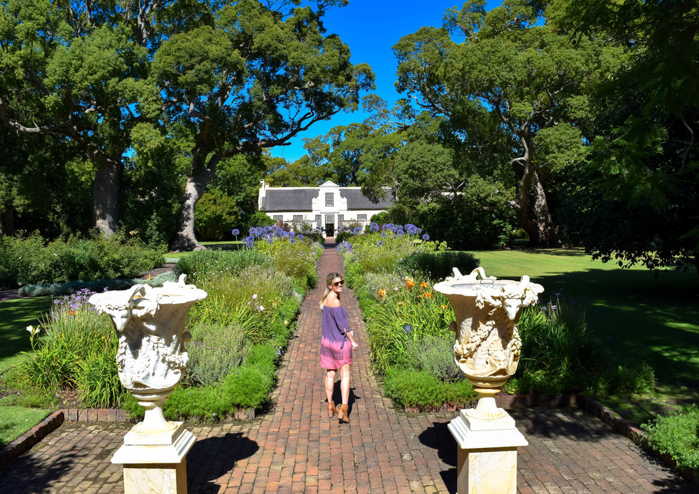 garden wine tastings |Vergelegen Wine Estate, Cape town|