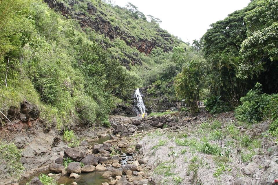 Waimea Falls Oahu