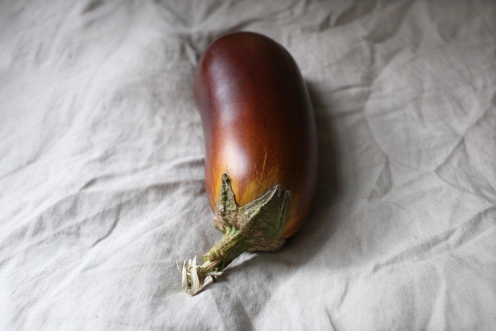 MargoSivin-Eggplant