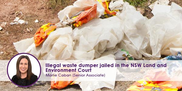 Illegal-Dumper.jpg