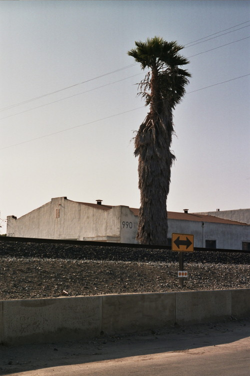 del-valle-041_1.jpg