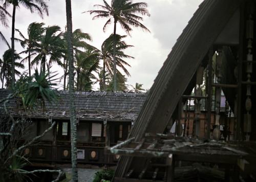 coco-palms-1_1.jpg