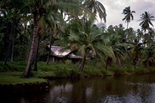 kauai-013_1.jpg
