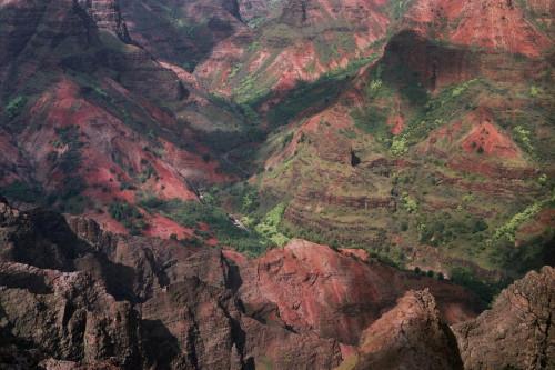 kauai-021_1.jpg