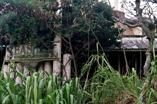 kauai-036_1.jpg