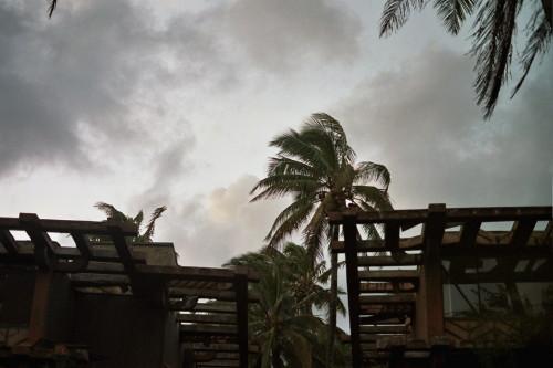 kauai-037_1.jpg