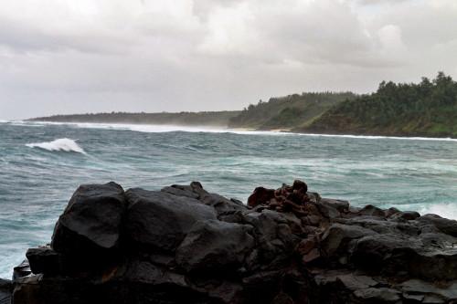 kauai-038_1.jpg