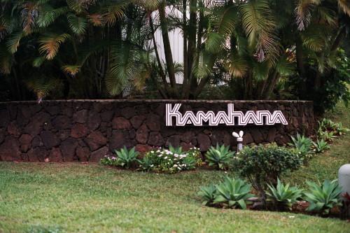 kauai-086_1.jpg