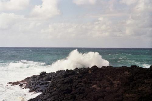kauai-122_1.jpg