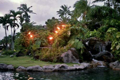 kauai-132_1.jpg